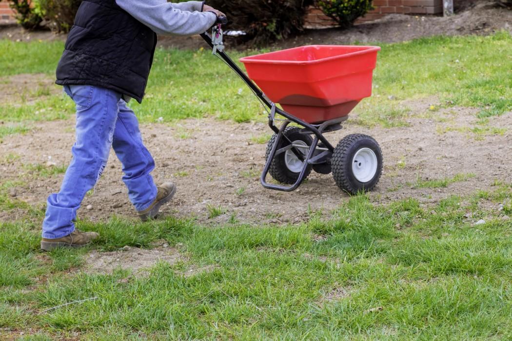 Gödlsa din färdiga gräsmatta i Uddevalla när gräset växer och inte är i vila.