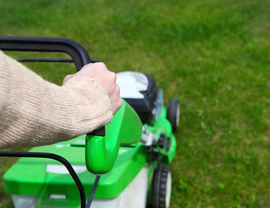 Klipp inte gräset för kort så sköter du om ditt nya rullgräs i Göteborg